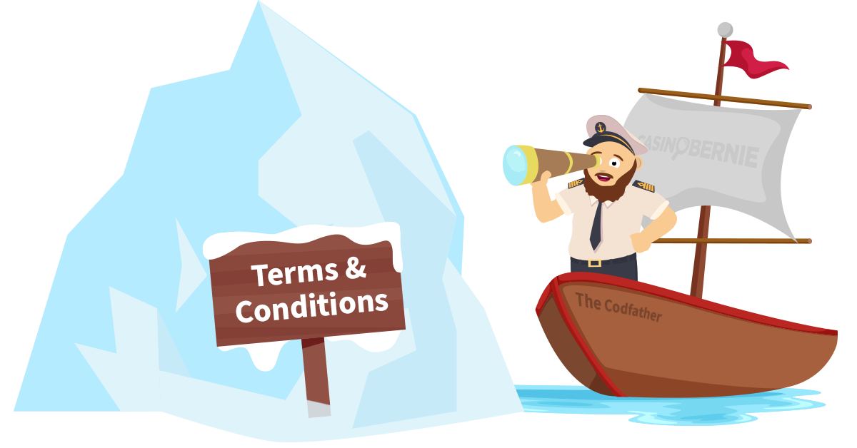 Casinobernie Terms and Conditions